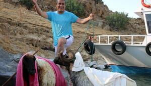 Akkoyun ile Karakoç balayı için Van Gölündeki Kuzu Adasına bırakıldı