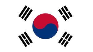 Güney Korede fabrika yangını