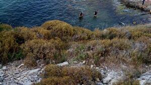 ek bilgi ve fotoğraflarla// Şilede ikinci kayıp; olumsuz hava koşulları nedeniyle denize girmek yasaklandı