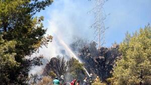 Makilik alanda çıkan yangın, ormana sıçramadan söndürüldü