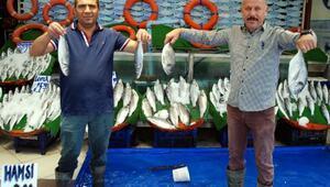 Kurban Bayramı balık satışlarını düşürdü