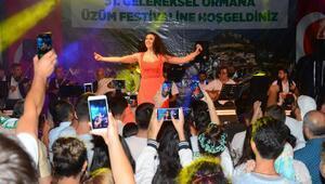 Ormanada festival coşkusu