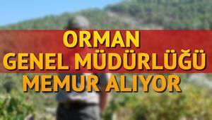 Orman Genel Müdürlüğü 77 personel alımı yapacak