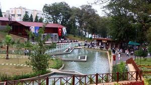 Trabzonda 130 çeşit bitkinin olduğu botanik park açıldı