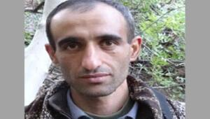 Gri listede aranan PKKlı terörist mektupla annesinden yardım istemiş