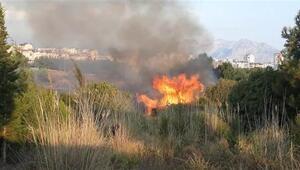 Antalya'da Konyaaltı sahiline yakın alanda korkutan orman yangını