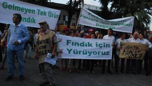 CHPliler Akçakocada fındık için yürüdü