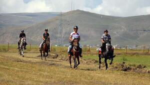 Ardahanda Rahvan ve Doğu Anadolu At Yarışları Şampiyonası