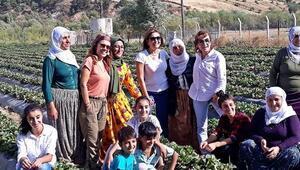 Batmanlı kadın çiftçi, Türkiye ikincisi olduğu projeyi hayata geçirdi