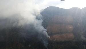 Yıldırım düştü; 1 hektar ormanlık alan yandı