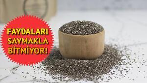 Chia tohumu nedir Chia tohumunun faydaları neler