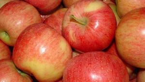 Avustralyada çilek ve muzdan sonra elmadan da iğne çıktı