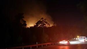 Antalya Kemer'de orman yangını (1)