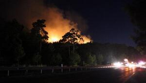Antalya Kemer'de orman yangını (2)- Yeniden