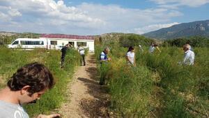 Pınarhisarlı çiftçiler Kuşkonmaz vadisini ziyaret etti