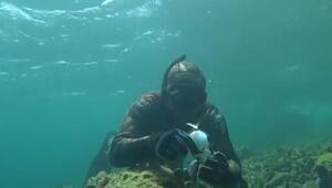 Dalgıçtan, oltaya yakalanan balığa hayat öpücüğü