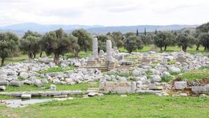Dionysos Tapınağı, ayağa kaldırılacak