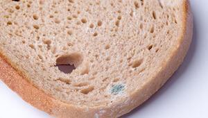 Ekmeğin küflü yerini koparıp gerisini yiyorsanız büyük tehlikede olabilirsiniz