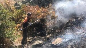 Aksarayda ormanlık alanda yangın