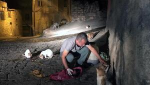 Seyyar satıcı, 30 yıldır kazancının bir bölümünü sokak kedilerine harcıyor