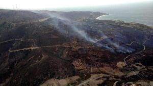 Karaburunda otluk ve tarım arazisinde yangın