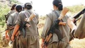 PKKlı teröristten kan donduran ifadeler