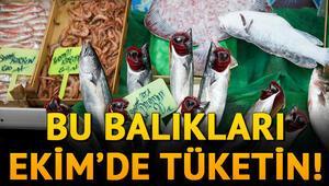 Ekimde hangi balıklar yenir Ekimde yenilmesi gereken balıklar