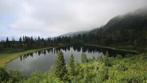 Artvinin 3üncü Karagölü turizme kazandırılacak