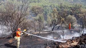 Gazipaşada orman yangını