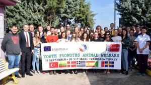 Avrupalı gençler, hayvan hakları için Çorluda