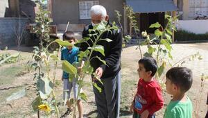 Yüksekovalı Süleyman ile Ukraynalı Mykola çapraz nakille sağlıklarına kavuştu