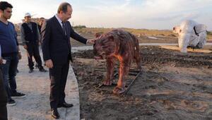 Edirne Belediyesinin hayvan replika müzesinde sona gelindi