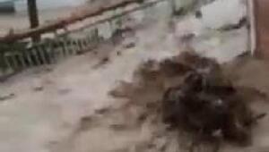 Doğu Karadenizde sağanak, sel ve heyelana yol açtı, yollar kapandı (2)