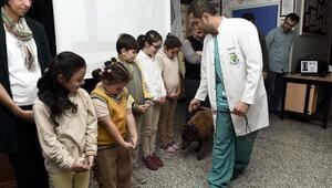 Hayvanları koruma günü öğrencilerle kutlandı