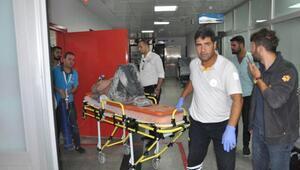 TIR ile kamyonet çarpıştı: 5 yaralı