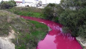 Bakan açıkladı... Ergene Nehrini kirleten işletmenin faaliyeti durduruldu