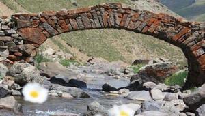 300 yıllık tarihi köprü ortada yok