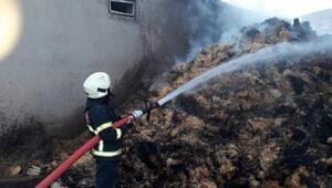 Şanlıurfa'da çiftlik yangınında tonlarca pamuk yandı