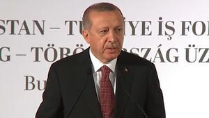 Son dakika... Cumhurbaşkanı Erdoğan Macaristanda konuştu