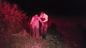 Kaybolan kadın ormanda bulundu