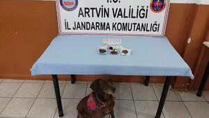 Artvinde uyuşturucu operasyonu: 2 gözaltı