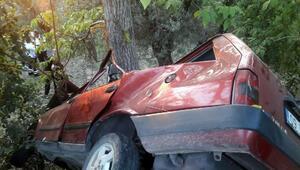 Ağaca çarpan otomobilin sürücüsü yaşamını yitirdi