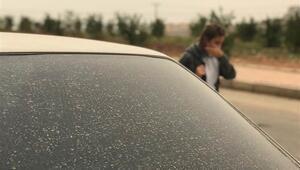 Gaziantep ve Şanlıurfada toz bulutu etkili oluyor
