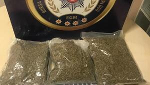 Bursada uyuşturucu operasyonu: 6 gözaltı