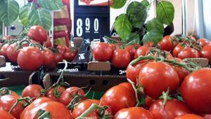 Sofranın kralı domates tarlada 3, İstanbul'da 8 lira
