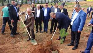 Trabzonda Muhtarlar Gününde fidan dikimi