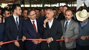 Güney Marmaranın en büyük canlı hayvan pazarı açıldı