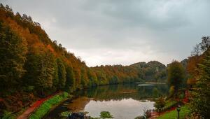Türkiyenin 36ncı tabiat parkı renkleriyle hayranlık uyandırıyor.