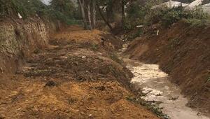 Yalovada, Balaban Deresi'nde ıslah çalışması sürüyor