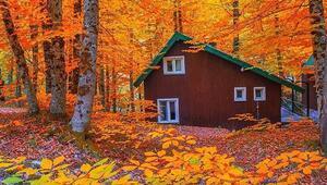 29 Ekim tatilinin en huzurlu adresleri Üstelik pek fazla cep yakmıyorlar…